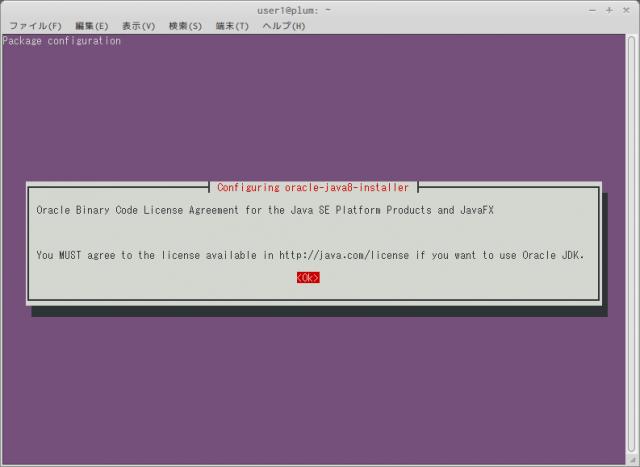 JDKをインストールして使用する [MA-E/XG/SA Developers' WiKi]